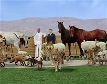Evan Almighty Photo 14