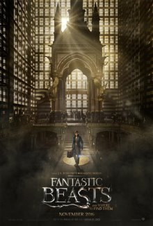 Fantastic Beasts and Where to Find Them photo 44 of 63