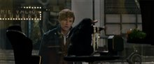 Fantastic Beasts and Where to Find Them Photo 34