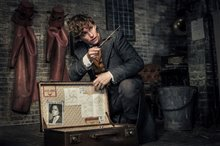 Fantastic Beasts: The Crimes of Grindelwald Photo 97