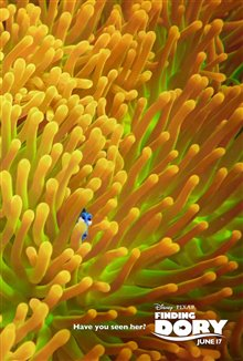 Finding Dory photo 25 of 29