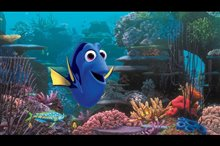 Finding Dory photo 1 of 29