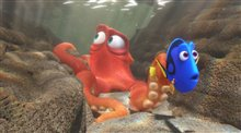 Finding Dory Photo 18
