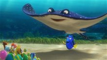 Finding Dory photo 20 of 29