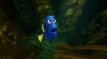Finding Dory Photo 22