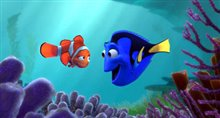 Finding Nemo Photo 1