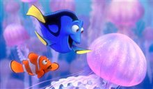 Finding Nemo Photo 3