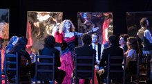 Flamenco, Flamenco Photo 14