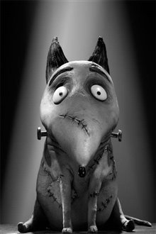 Frankenweenie photo 24 of 28