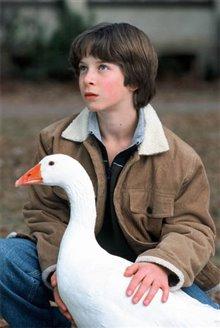 Goose! Photo 3 - Large