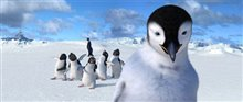 Happy Feet Photo 4