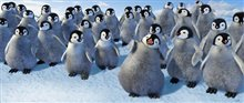 Happy Feet Photo 6