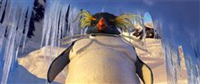 Happy Feet Photo 8