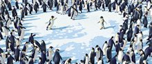 Happy Feet Photo 14