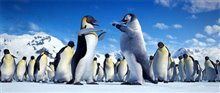 Happy Feet Photo 16