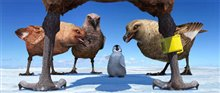 Happy Feet Photo 26