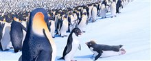 Happy Feet Two Photo 23