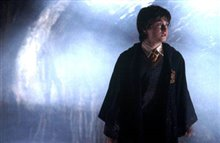 Harry Potter and the Chamber of Secrets Photo 19