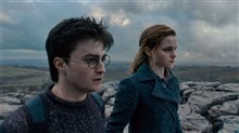 Harry Potter and the Deathly Hallows: Part 1 photo 17 of 78