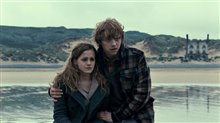 Harry Potter and the Deathly Hallows: Part 1 Photo 21