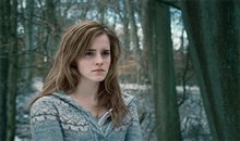 Harry Potter and the Deathly Hallows: Part 1 photo 40 of 78
