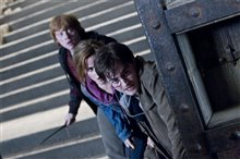 Harry Potter and the Deathly Hallows: Part 2 Photo 14