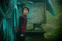 Harry Potter and the Goblet of Fire Poster Large