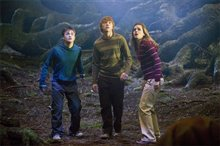 Harry Potter and the Order of the Phoenix Photo 10 - Large