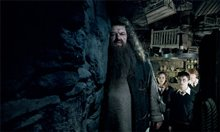 Harry Potter and the Order of the Phoenix Photo 31