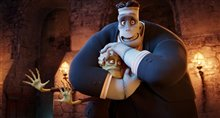 Hotel Transylvania Photo 11