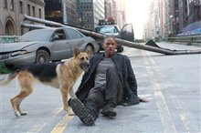 I Am Legend Photo 1