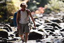 Into the Wild Photo 5