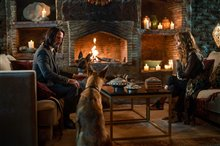 John Wick: Chapter 3 - Parabellum photo 7 of 40