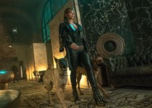 John Wick: Chapter 3 - Parabellum Photo 4