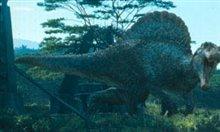 Jurassic Park III Photo 7