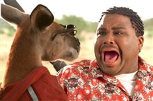 Kangaroo Jack Photo 12