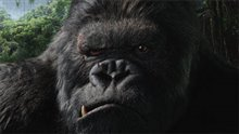 King Kong Photo 20