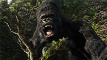 King Kong Photo 21