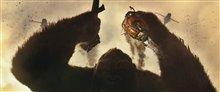 Kong: Skull Island Photo 16