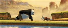 Kung Fu Panda Photo 2