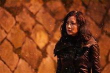 Lady Vengeance Photo 4