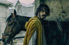 Le chevalier vert Photo 2