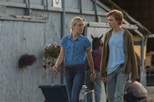 Lean on Pete Photo 8