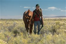 Lean on Pete (v.o.a.) Photo 12