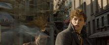 Les animaux fantastiques : Les crimes de Grindelwald Photo 76