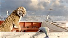 Life of Pi photo 6 of 8