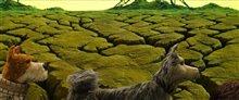 L'île aux chiens (v.o.a.s.-.t.f.) Photo 13