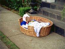 Little Man Photo 6