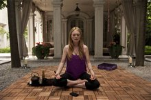 Maps to the Stars Photo 5