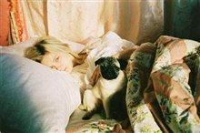 Marie Antoinette Photo 5